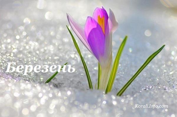 berezen_kalendar_2019.jpg (67.64 Kb)