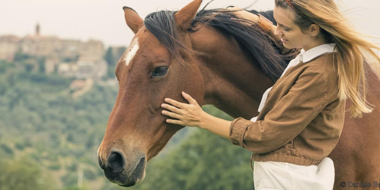 koni.jpg (103.92 Kb)