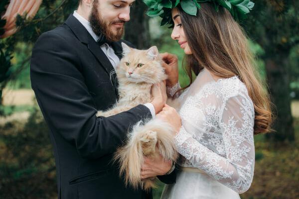 Кумедні весільні випадки