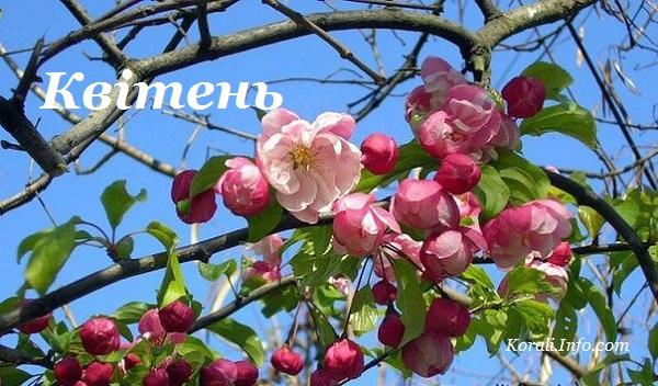 kviten_kalendar_2019.jpg (116.38 Kb)