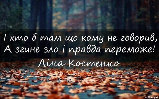 lina_kostenko.jpg (43.28 Kb)