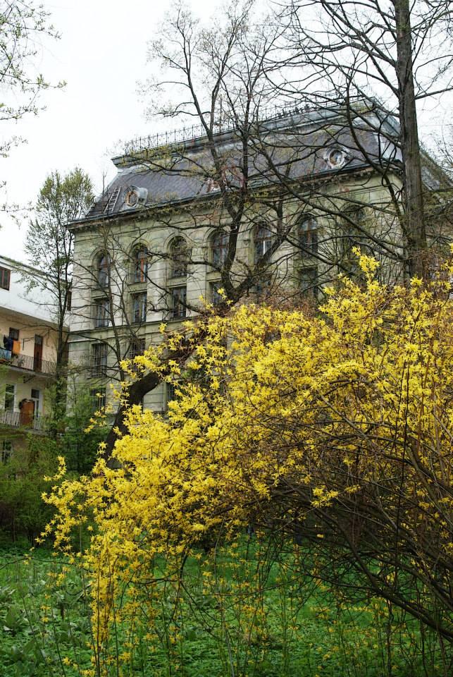 lviv_kuszik.jpg (174.68 Kb)