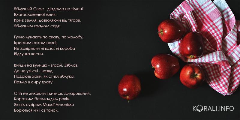 na_spasa_8.jpg (274.38 Kb)