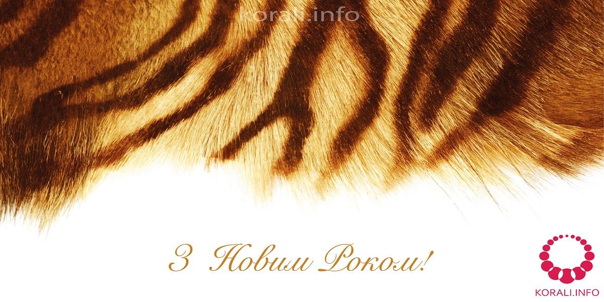 novii_rik_tigra_12.jpg (310.67 Kb)