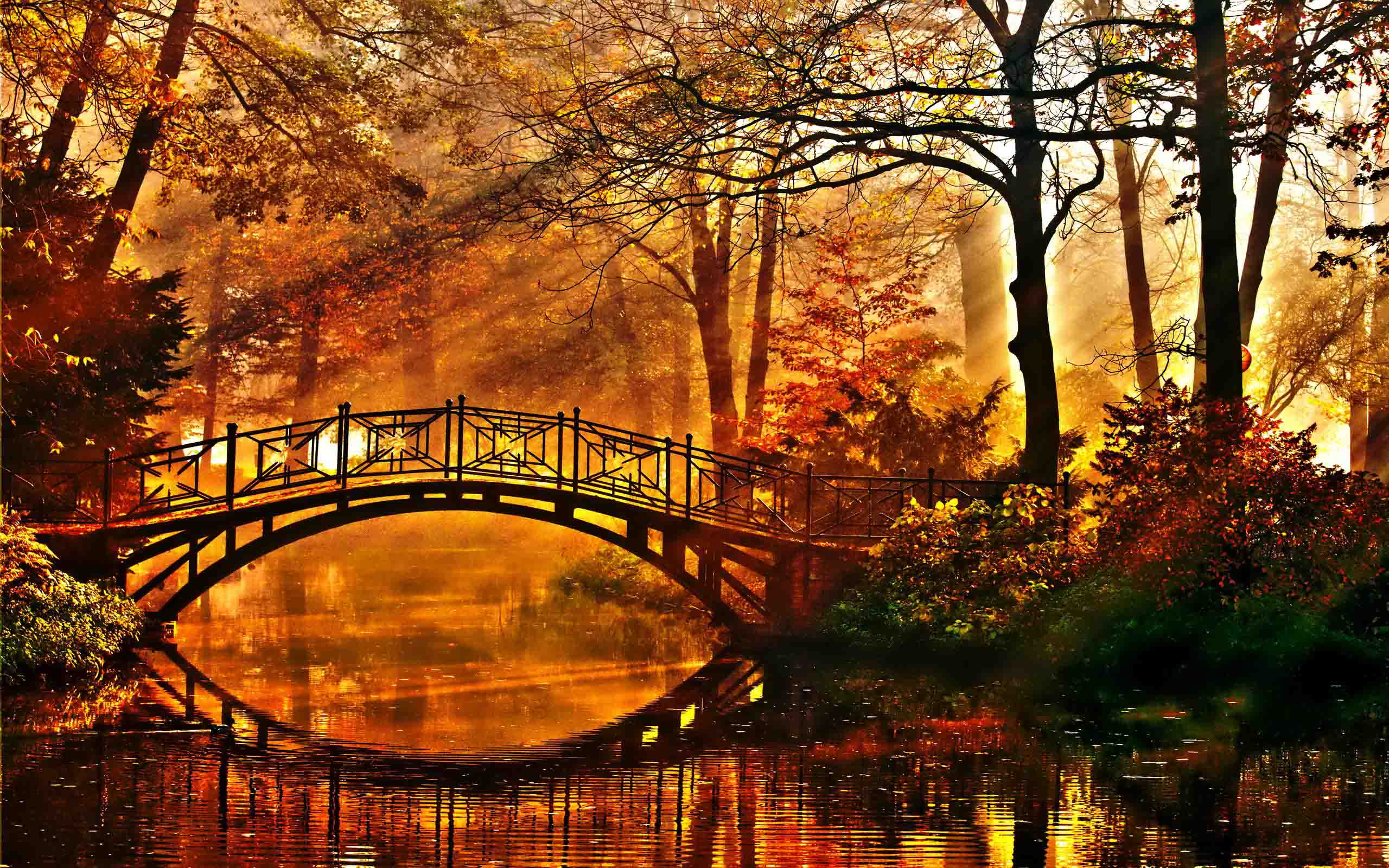 Романтичні вірші про осінь