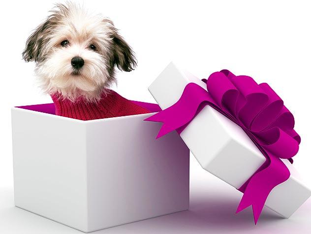 Як обрати подарунок