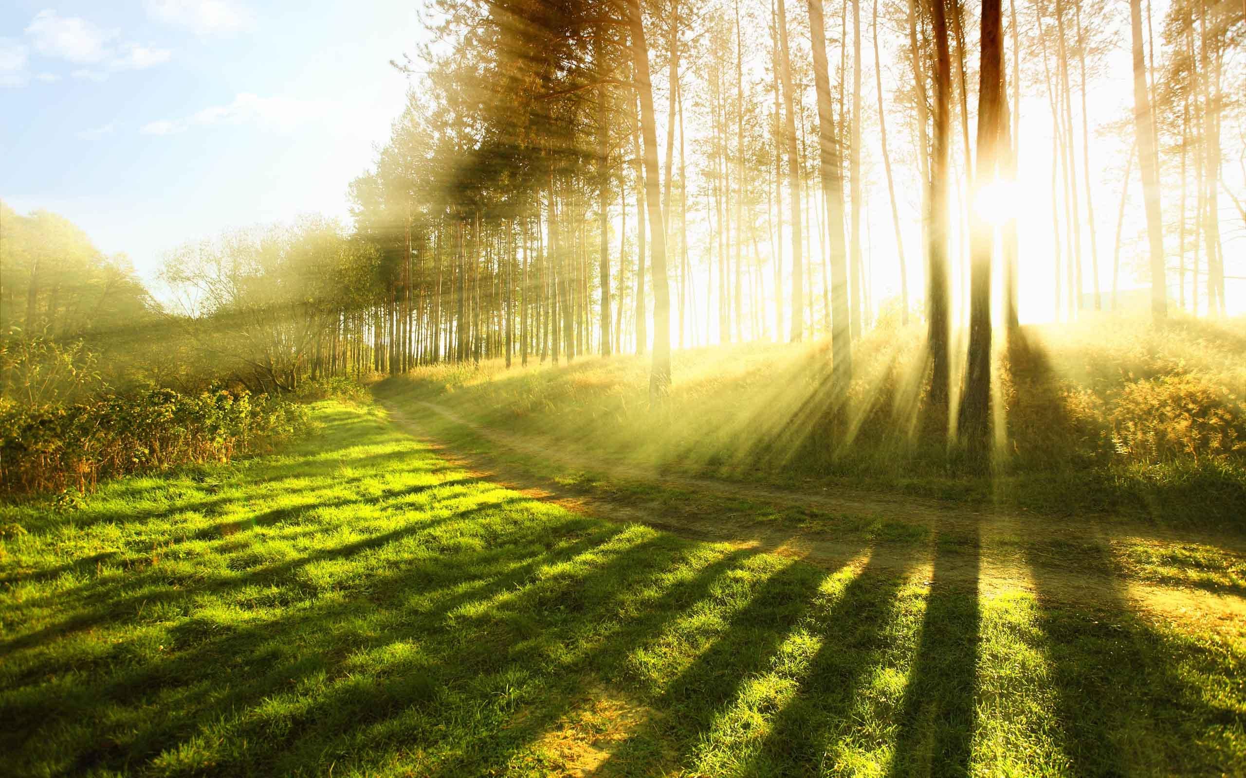 Як називають весняне сонце?