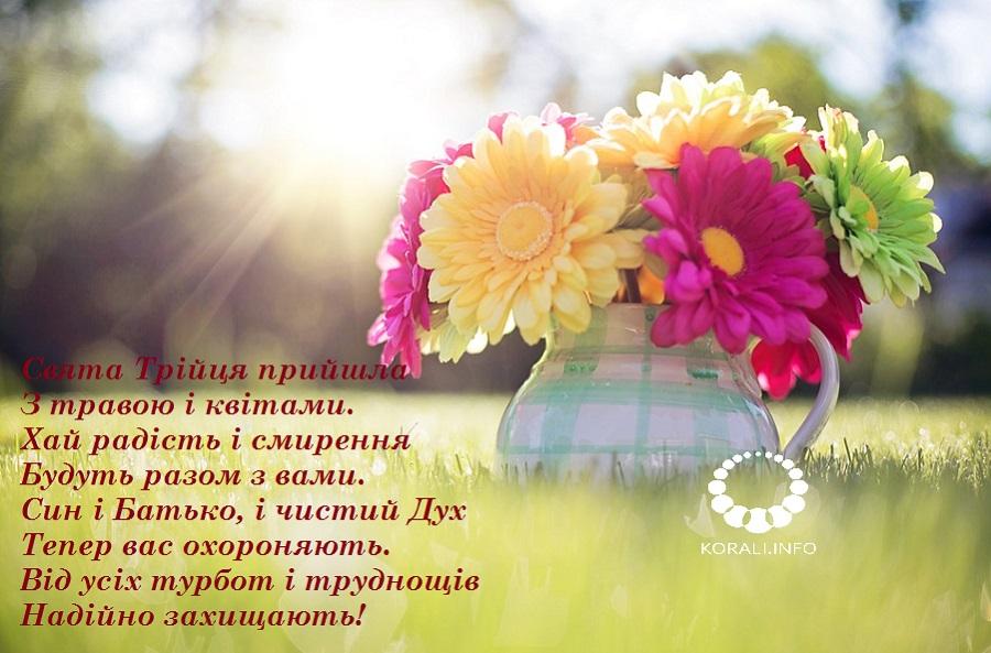 zeleni_svyata_v_kartinkah_2020_7.jpg (169.55 Kb)
