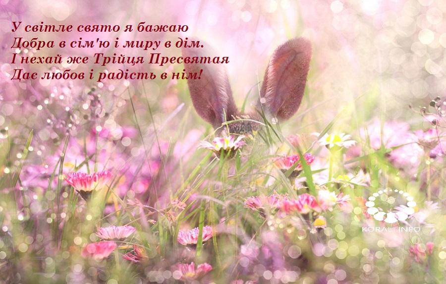 zeleni_svyata_v_kartinkah_2020_8.jpg (184.85 Kb)