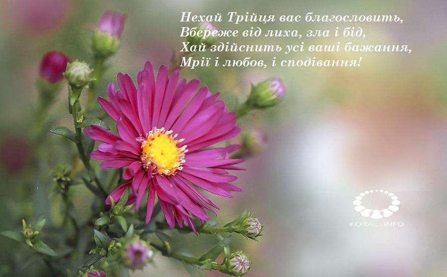 zeleni_svyata_v_kartinkah_2020_9.jpg (119.75 Kb)